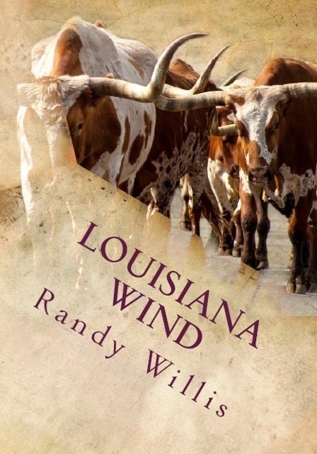 Louisiana Wind by Randy Willis