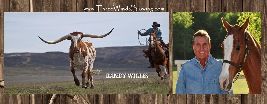 randy willis